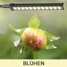 Pflanzenlampe LED Vollspektrum
