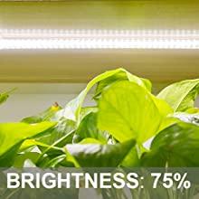 Led Pflanzenlampe für Zimmerpflanzen