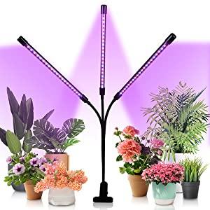 Pflanzenlampe mit Rot Blau Licht