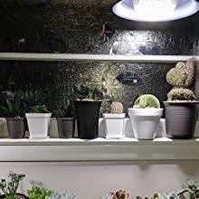 Pflanzenlampe vollspektrum