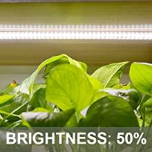 Pflanzenlampe für Zimmerpflanzen