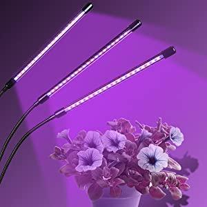 Pflanzenlampe Dimmbar
